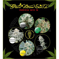 MIX G INDICA (10) 100% GREEN HOUSE