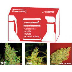 COLECCION 2 1024/2046/JACK L.M  100% MEDICAL SEEDS