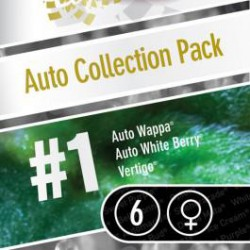AUTO COLLECTION PACK 1 100% PARADISE