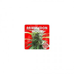 ARMAGEDON MOON (5) 100% THE MOON SEEDS