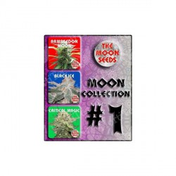 MOON COLLECTION 1 THE MOON SEEDS