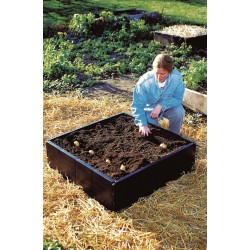 GROW BED (98X98X25 CM) (230 LTS)