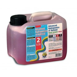 DUTCH FORMULA BLOOM 2  5 LTS ADV. HYDROPONICS