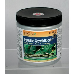 GROWTH BOOSTER 300 GRS GROTEK