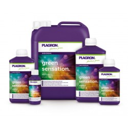 GREEN SENSATION 1 LTR PLAGRON