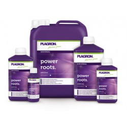 POWER ROOTS 5 LTRS PLAGRON