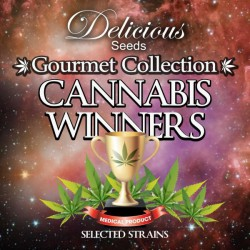 CANNABIS WINNERS 1 DELICIOUS